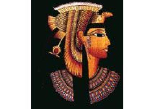 Chá egípcio de hibiscos da deusa ísis
