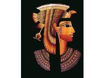 Chá egípcio de hibiscos da deusa ísis   Luiz Lapetina
