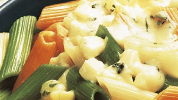 Penne tricolor aos quatro queijos