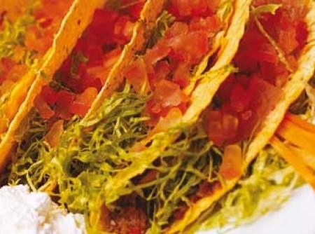 Tortillas mexicanas | Sandra lara