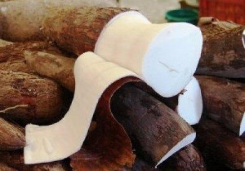 Bolo de aipim com coco