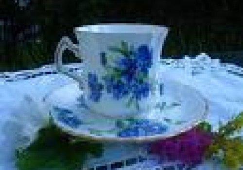 Chá de todas as cores