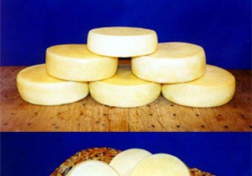 Conhecendo mais os queijos
