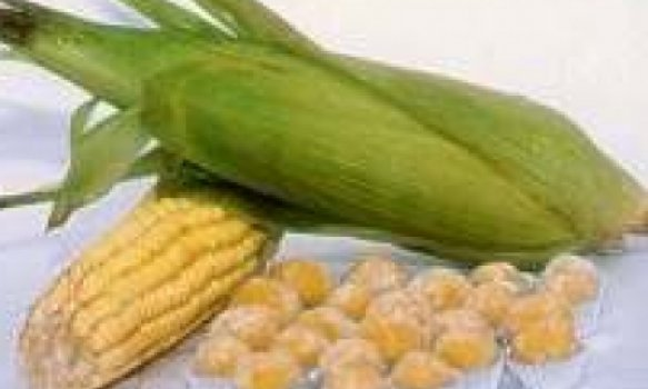 Brigadeiro de Milho Verde