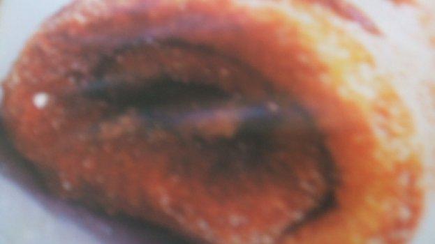 Rocambole de Abóbora