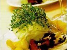 Salada verde com amor-perfeito