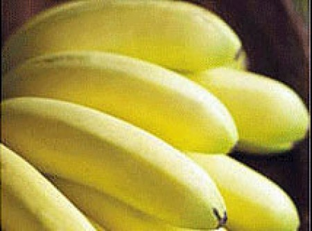 Lasanha de Banana com Queijo | José Roberto de Medeiros
