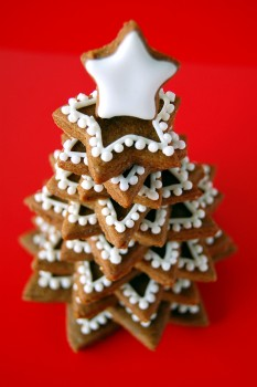 Árvore Estrela de Natal