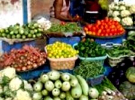 Salada de manga e abacaxi e cerejas do nepal | Luís Eduardo Dias Parada