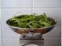 Massa Verde para Macarrão