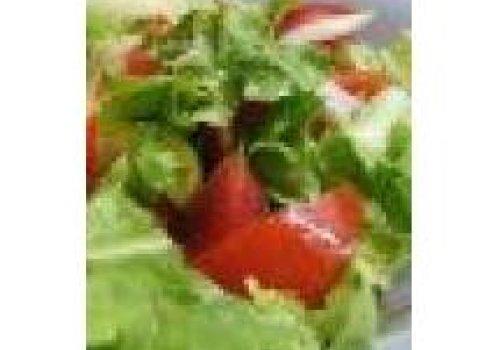 Salada de Rucúla com Tomate e Alface