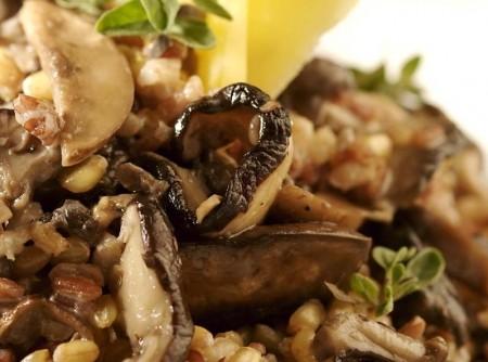 Risoto de grãos com cogumelos frescos | CyberCook