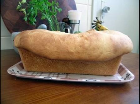 Receita Básica de Pão