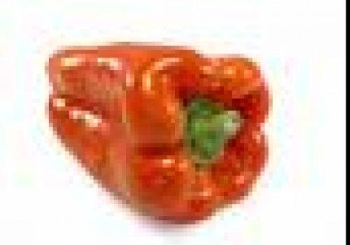Caracois de Pimento Vermelho