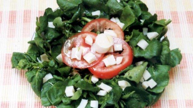 Salada de Agrião, Palmito e Tomate