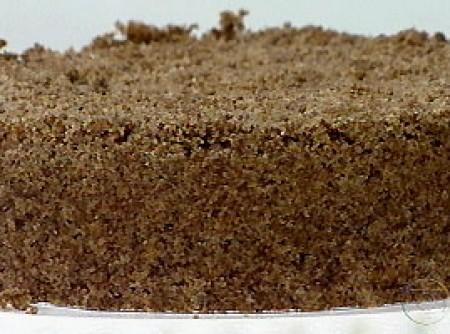 Cuca Cremosa de Chocolate