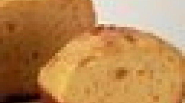 Pão de Cenoura não Sovado