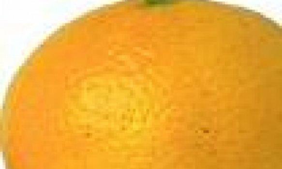 Bolo de Clementinas