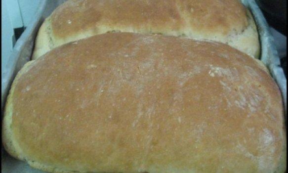 Pão trigo econômico