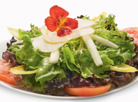 Matriz Flower Salad