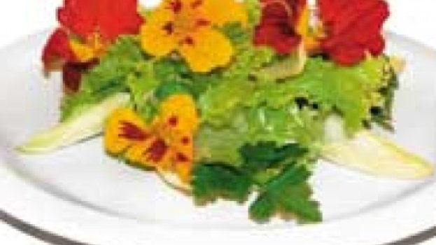 Salada de endívia com mexerica e violetas
