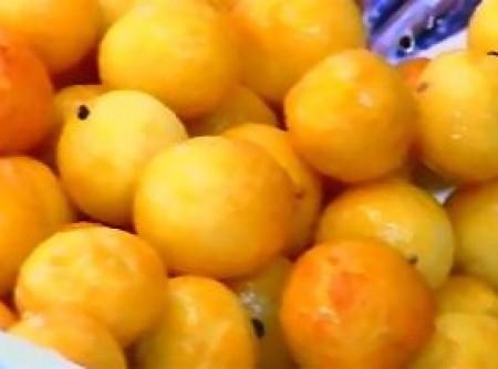Gulab Jamon - Bolinhas de Leite em Pó