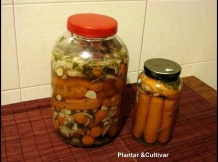 conserva de salsicha