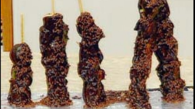Espetinhos de Frutas e Doce com Chocolate