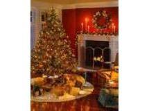 Fantasia de Natal