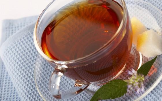 Chá Delicioso de Mate e Gengibre | Ana Paula Silva