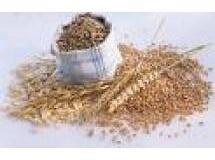 Mix fibras da silvaninha