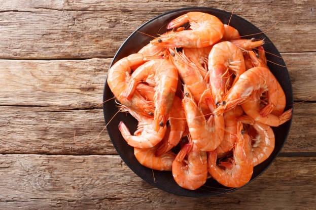 Camarão: o ilustríssimo (e delicioso) crustáceo
