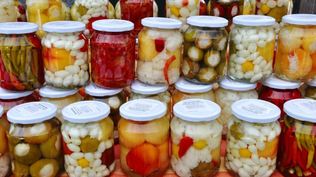 Kombucha com Legumes